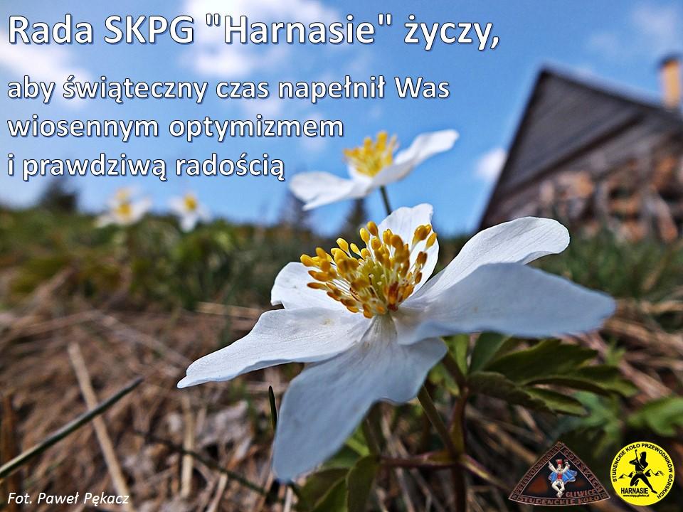 Życzenia wielkanocne SKPG Harnasie z Gliwic